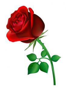 Soirée de la Saint-Valentin